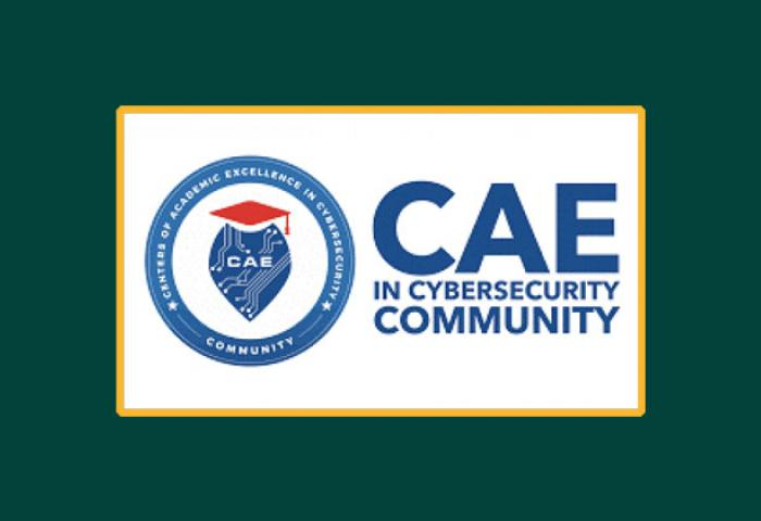 Cyber Security CAE banner