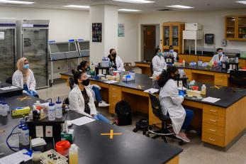 Biology students in class in the lab